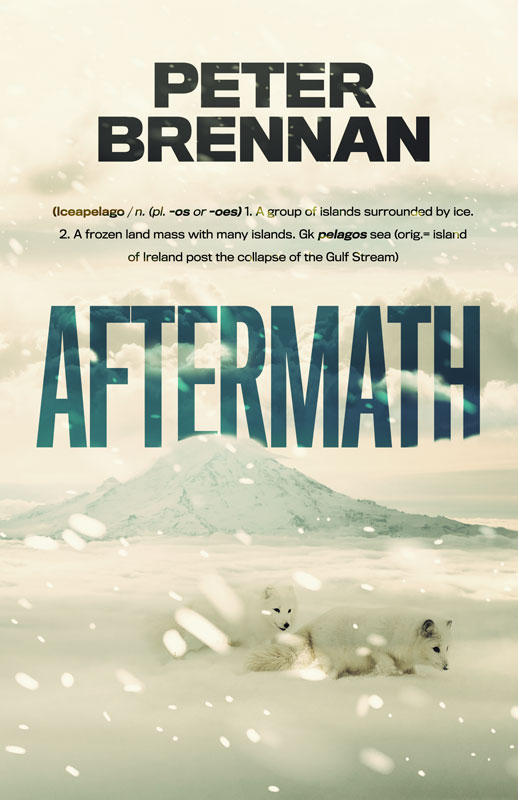 Book cover for the book Aftermath by Peter Brennan